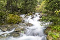 Spring waterfall royalty free stock photo