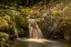 Spring Waterfall Tiverton Ontario Canada. Magical looking Spring Waterfall near Tiverton Ontario Canada stock photo