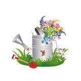 Spring in a watering can Royalty Free Stock Image