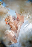 Spring wedding Stock Photo