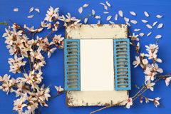 spring white cherry blossoms tree and blank photo frame Royalty Free Stock Photography