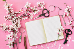Spring white cherry blossoms tree and open notebook Royalty Free Stock Images