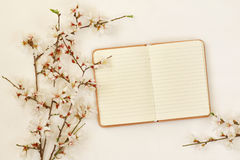 Spring white cherry blossoms tree and open notebook Stock Photography
