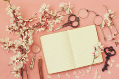 Spring white cherry blossoms tree and open notebook Stock Photos