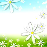 Spring white flowers in blue green background Stock Image