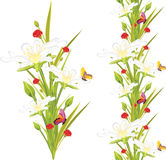 Spring white flowers and butterflies on the white stock images