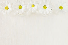 Spring white flowers on a fabric background. Copy space. Background. Pattern. Stock Photo