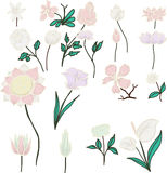 Spring white isolate flowers, vector set Stock Images