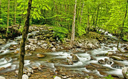 Spring and white water in The Great Smoky Mountains. HDR Stock Photo