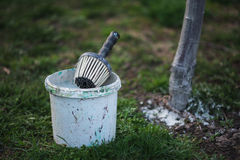 Spring whitewashing of trees. Protection from sun and pests. Ukraine Stock Photography
