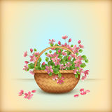 Spring wicker basket cherry flowers greeting card Stock Photo