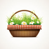 Spring in wicker basket Royalty Free Stock Photos