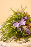 Spring wild flower bouquet royalty free stock image