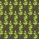 Spring wild flower leaves field seamless pattern. Floral tender fine summer vector pattern on brown background. For fabric textile prints and apparel Stock Photos
