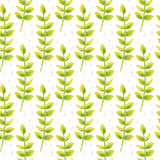 Spring wild flower leaves field seamless pattern. Floral tender fine summer vector pattern on white background. For fabric textile prints and apparel Stock Photography
