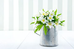 Spring wild flowers in an old metal cup Royalty Free Stock Photo