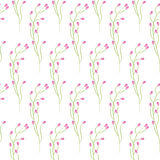 Spring wild pink flower field seamless pattern. Floral tender fine summer vector pattern on white background. For fabric textile prints and apparel Stock Photography