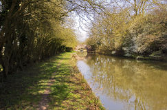 Spring with Wild Plum Blossom on the Grand Union Canal at Yelvertoft Cover, Northamptonshire Royalty Free Stock Photography