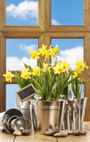 Spring Window Royalty Free Stock Photos