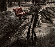 Bench among melting snow. Stock Images