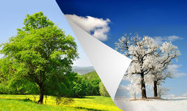 Spring and winter landscape. Change of seasons from winter to summer Royalty Free Stock Photos