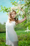 Spring woman blossoming garden Royalty Free Stock Images