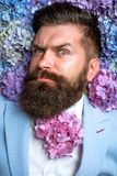 Spring. womens day. male with hydrangea flowers. Mature hipster with beard. Healthy hair and skin. brutal caucasian stock images