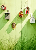 Spring wooden wall Royalty Free Stock Image