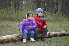Spring in the woods on a log sitting a little boy and girl. Stock Images