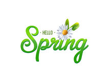 Spring word with chamomile royalty free illustration