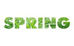 Spring word concept Royalty Free Stock Photo