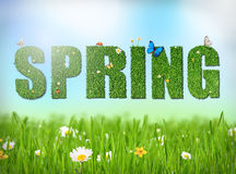 Spring word with grass and flowers Stock Image