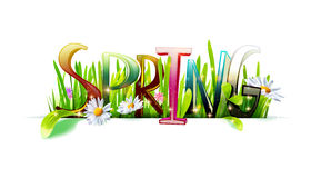 Spring word with grass on white Royalty Free Stock Images