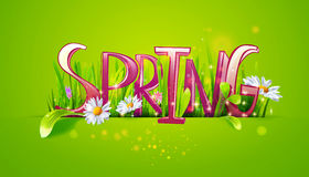 Spring word on green background stock illustration