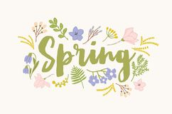 Spring word handwritten with elegant cursive calligraphic font and surrounded by beautiful blooming flowers and leaves. Gorgeous seasonal lettering isolated on Stock Photo
