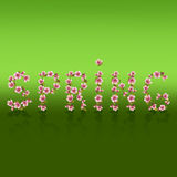 Spring word, sakura blossom - Japanese cherry tree Stock Photos