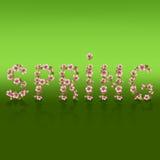 Spring word, sakura blossom - Japanese cherry tree Stock Photos