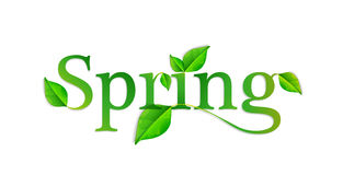 Spring word. Vector illustration EPS10 Stock Photo
