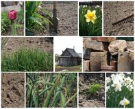 Spring work collage Royalty Free Stock Photos