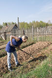 Spring works in the village. Girl dig in the garden for planting Stock Image
