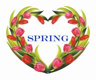 Spring wreath Royalty Free Stock Photography