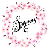 Spring wreath with cherry blossoms. Place for text Stock Photography