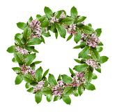 Spring wreath with green leaves and lilac flowers. Isolated on white background. Flat lay. Top view Royalty Free Stock Photos