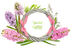 Spring wreath with pink and purple hyacinth flowers on white Royalty Free Stock Photography