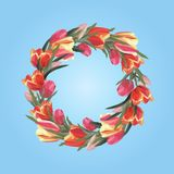 Spring wreath of tulips on a blue background stock illustration