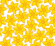 Spring yellow flower seamless pattern on white Stock Photos