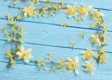 Spring yellow flowers on  blue wooden background Stock Photography