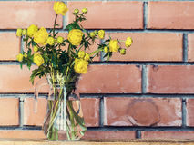 Spring yellow flowers in a glass vase on brick wall background Stock Photos