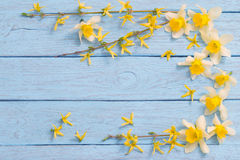 Spring yellow flowers on old wooden background Stock Photography