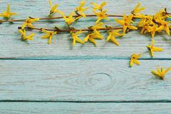 Spring yellow flowers on old wooden background Stock Images